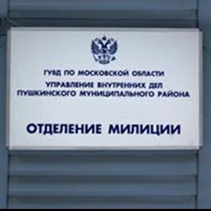 Отделения полиции Тарумовки